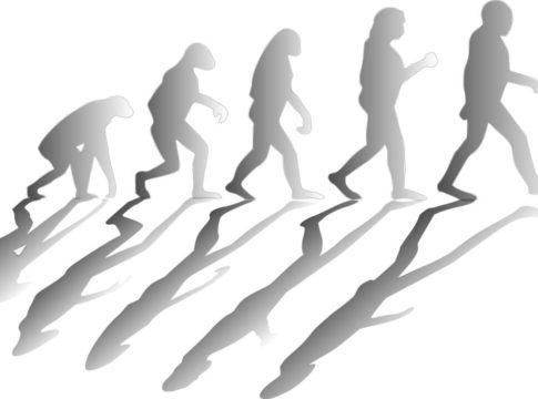 Evolucija i Biblija