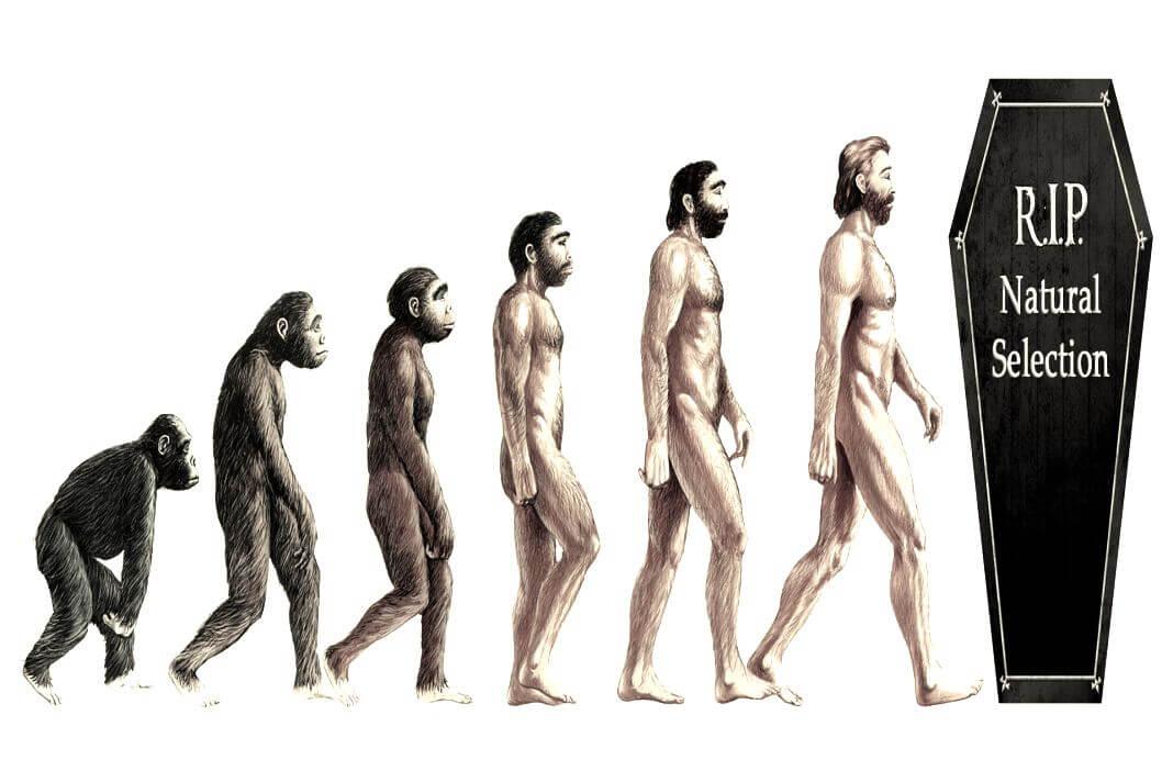 evolucija Kent Hovind