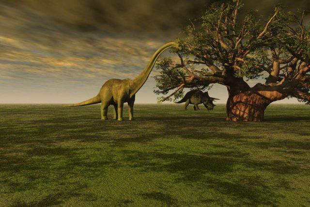 dinosaurusi Biblija evolucija