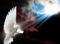 Duh Sveti