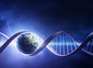 evolucija DNK