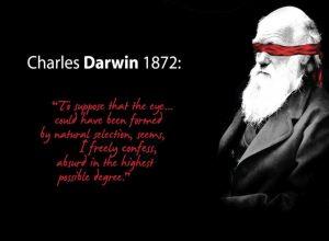 evolucija Darwin