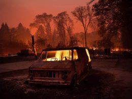 pakao požar Kalifornija