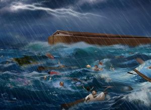 Noa brod