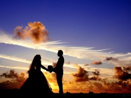 samci brak