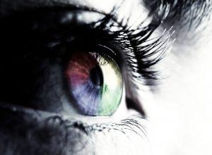 ljudsko oko evolucija