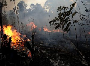požari Amazonija Aljaska Sibir