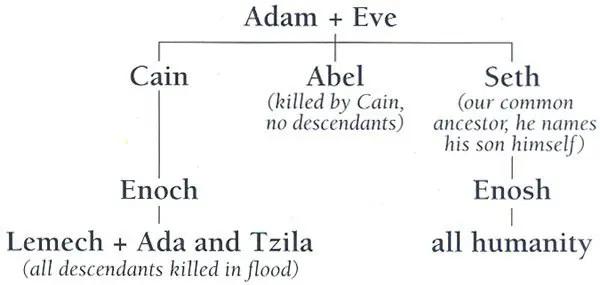 Šetova teorija