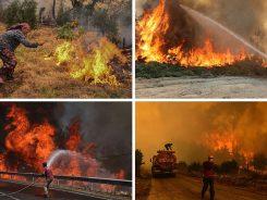požari diljem Europe